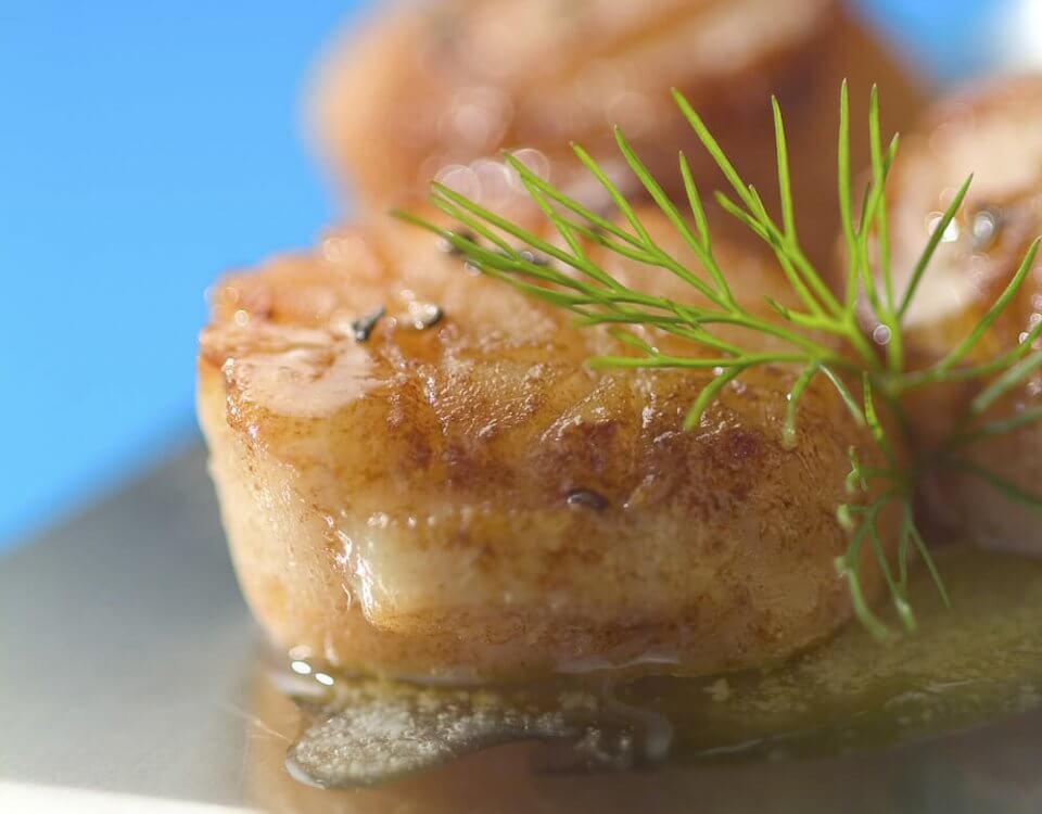 noix de saint jacques poelée accompagnée d'un filet d'huile d'olive